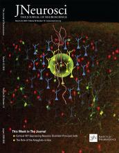 The Journal of Neuroscience: 36 (12)