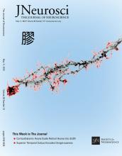 The Journal of Neuroscience: 36 (19)