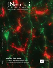 The Journal of Neuroscience: 36 (2)