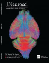 The Journal of Neuroscience: 36 (24)