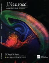 The Journal of Neuroscience: 36 (26)