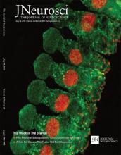 The Journal of Neuroscience: 36 (29)