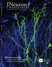 The Journal of Neuroscience: 36 (31)