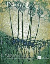 The Journal of Neuroscience: 36 (34)