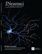 The Journal of Neuroscience: 36 (35)