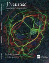 The Journal of Neuroscience: 36 (37)