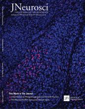 The Journal of Neuroscience: 36 (39)
