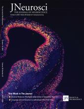 The Journal of Neuroscience: 36 (42)