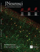 The Journal of Neuroscience: 36 (43)