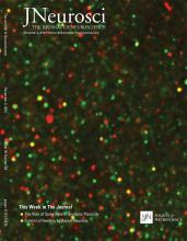 The Journal of Neuroscience: 36 (44)