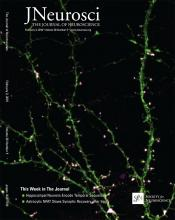 The Journal of Neuroscience: 36 (5)