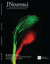 The Journal of Neuroscience: 36 (50)