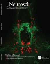 The Journal of Neuroscience: 36 (6)