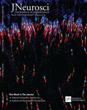 The Journal of Neuroscience: 36 (7)
