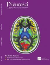 The Journal of Neuroscience: 37 (1)
