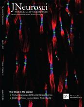 The Journal of Neuroscience: 37 (10)