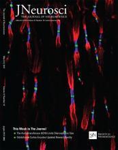 The Journal of Neuroscience: 37 (10)