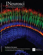 The Journal of Neuroscience: 37 (11)