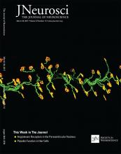 The Journal of Neuroscience: 37 (13)