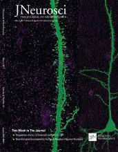 The Journal of Neuroscience: 37 (18)