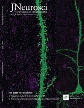 The Journal of Neuroscience: 37 (18)