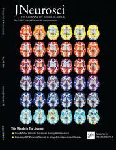 The Journal of Neuroscience: 37 (20)