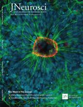The Journal of Neuroscience: 37 (22)