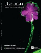 The Journal of Neuroscience: 37 (26)