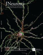 The Journal of Neuroscience: 37 (29)