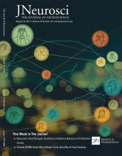 The Journal of Neuroscience: 37 (33)