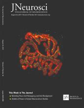 The Journal of Neuroscience: 37 (34)