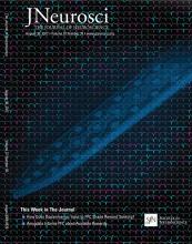 The Journal of Neuroscience: 37 (35)