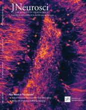 The Journal of Neuroscience: 37 (38)