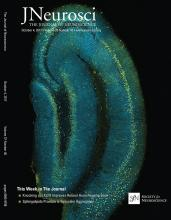 The Journal of Neuroscience: 37 (40)