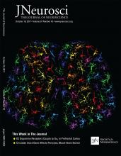 The Journal of Neuroscience: 37 (42)