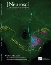 The Journal of Neuroscience: 37 (44)