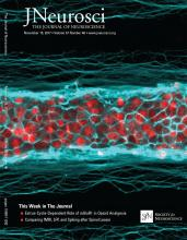 The Journal of Neuroscience: 37 (46)