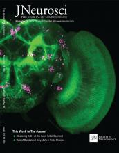 The Journal of Neuroscience: 37 (48)