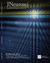 The Journal of Neuroscience: 37 (5)