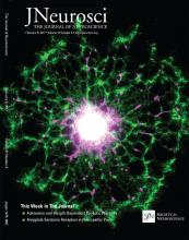 The Journal of Neuroscience: 37 (6)