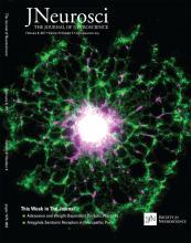 The Journal of Neuroscience: 37 (6)