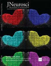 The Journal of Neuroscience: 37 (7)