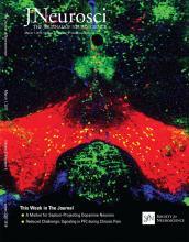 The Journal of Neuroscience: 37 (9)