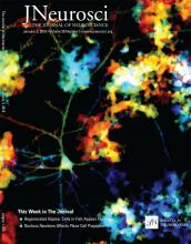The Journal of Neuroscience: 38 (1)