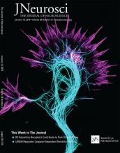 The Journal of Neuroscience: 38 (2)