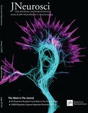 The Journal of Neuroscience: 38 (2)