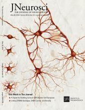 The Journal of Neuroscience: 38 (22)