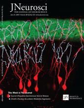 The Journal of Neuroscience: 38 (26)