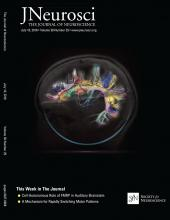 The Journal of Neuroscience: 38 (29)