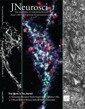 The Journal of Neuroscience: 38 (31)